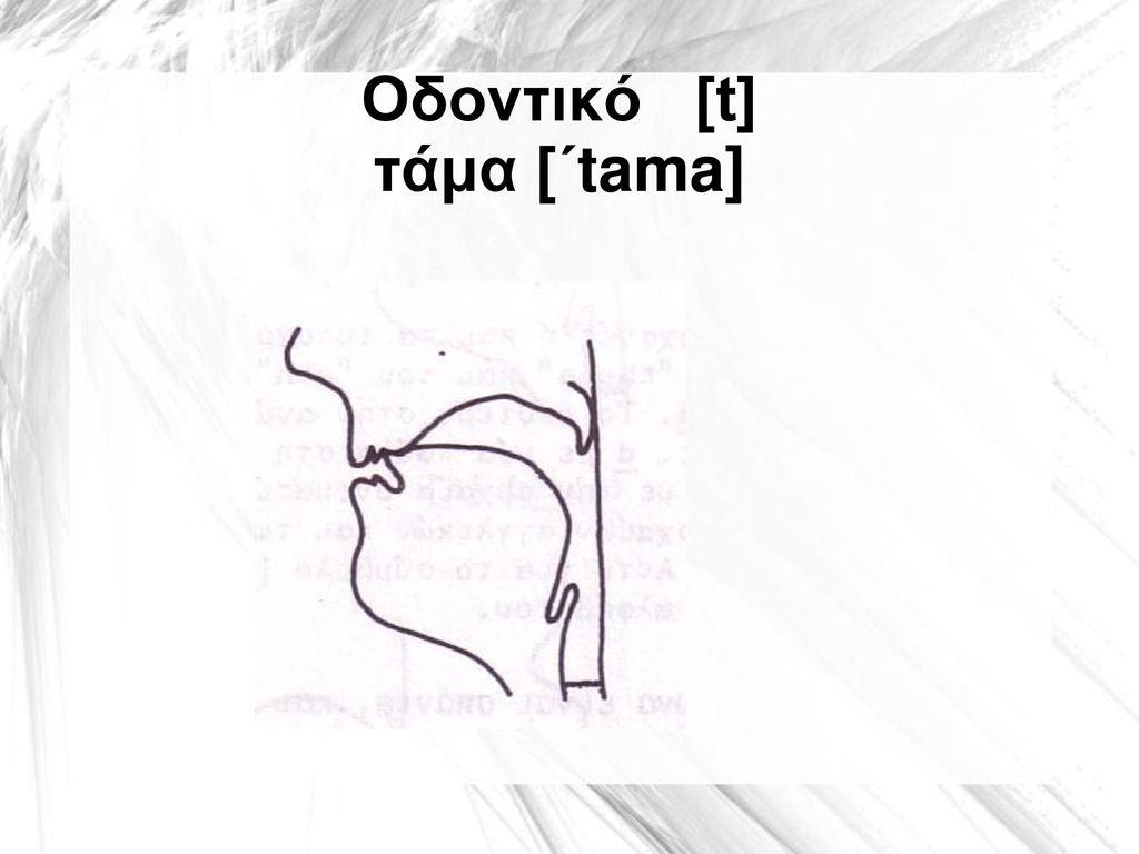 Οδοντικό [t] τάμα [΄tama]